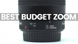 The Best Budget Canon Zoom Lens For Video | Canon Telephoto EF 75-300mm mark iii Review